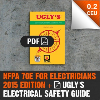 nfpa70e-managers-electricians-ugly-05.jpg